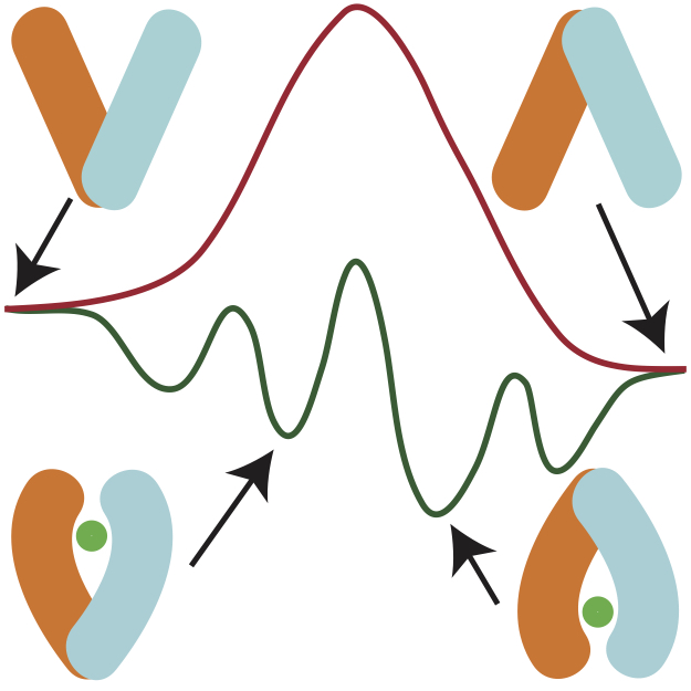 molecular biophysics research papers